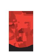 Dubai Netball Logo